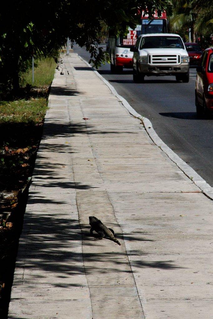 Auf den Straßen von Cancun