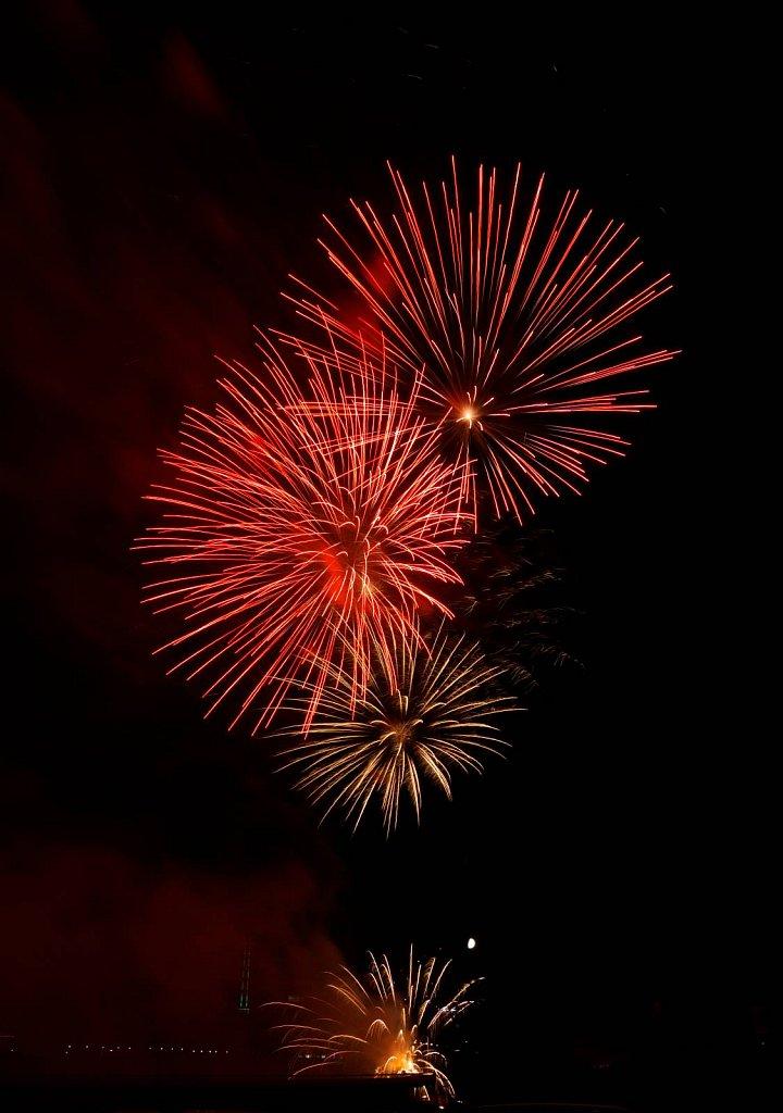 Feuerwerk #8
