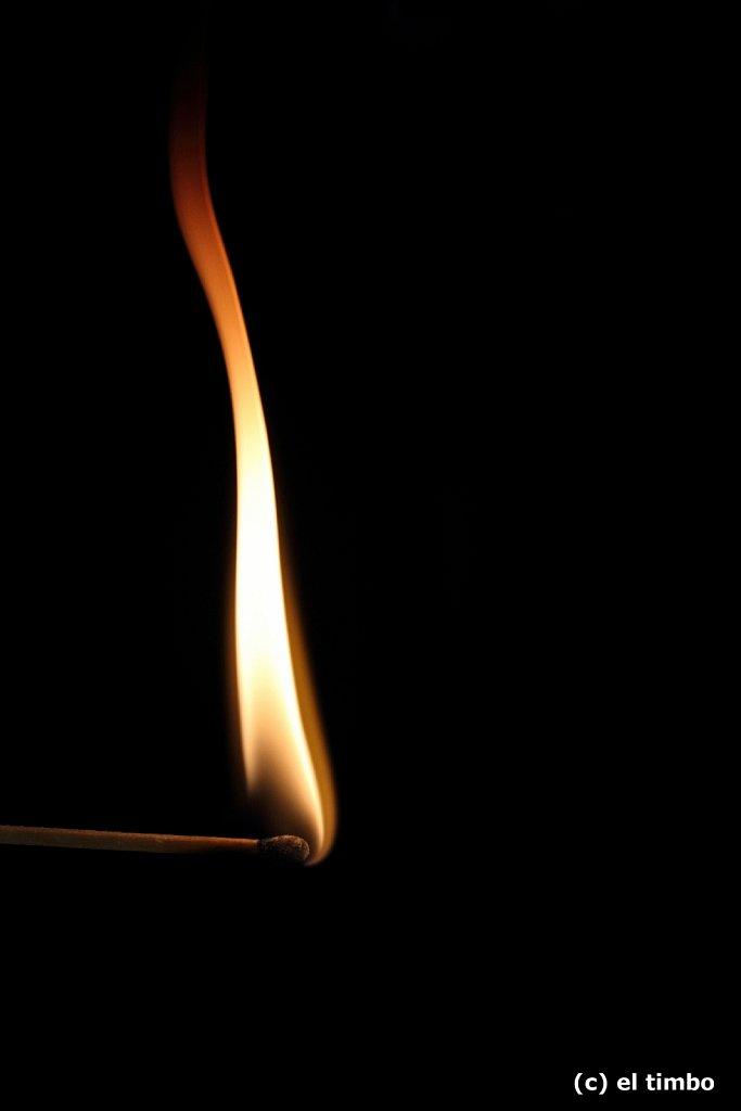 flammen002-1.jpg