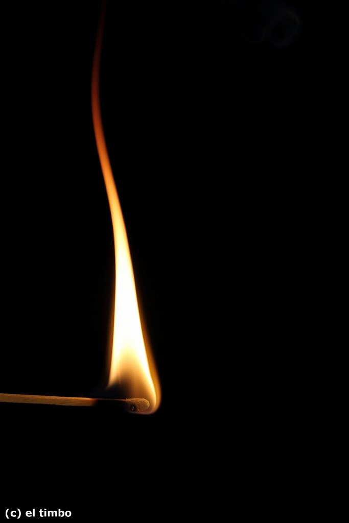 flammen003-0.jpg