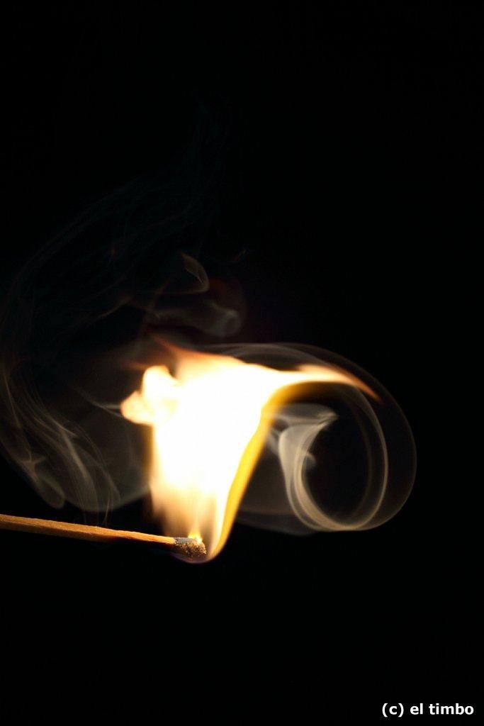 flammen005.jpg