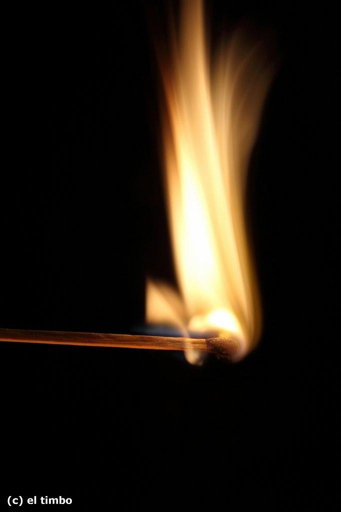 flammen007.jpg